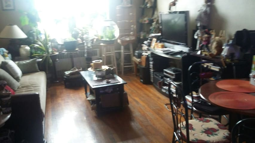 Cozy and bright one bedroom apartment . - Bronx - Appartement