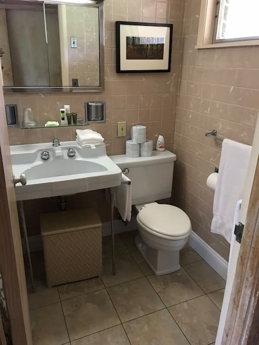 The private bathroom with shower includes shampoo, soap and towels.