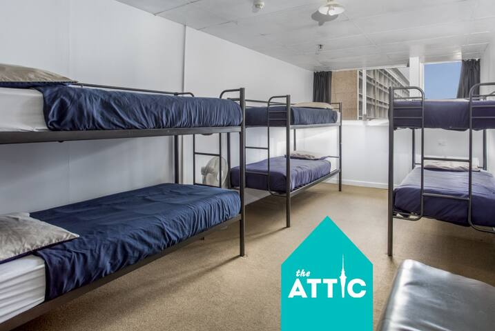 Private 12-Bed Dorm GREAT for Friends & Groups