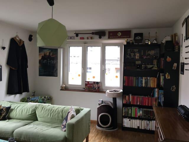 Binningen Wohnung