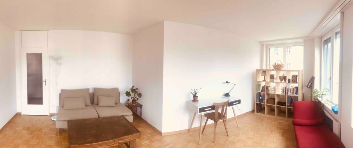 A Sunny Spacious 70 sq m flat in the heart of Bern
