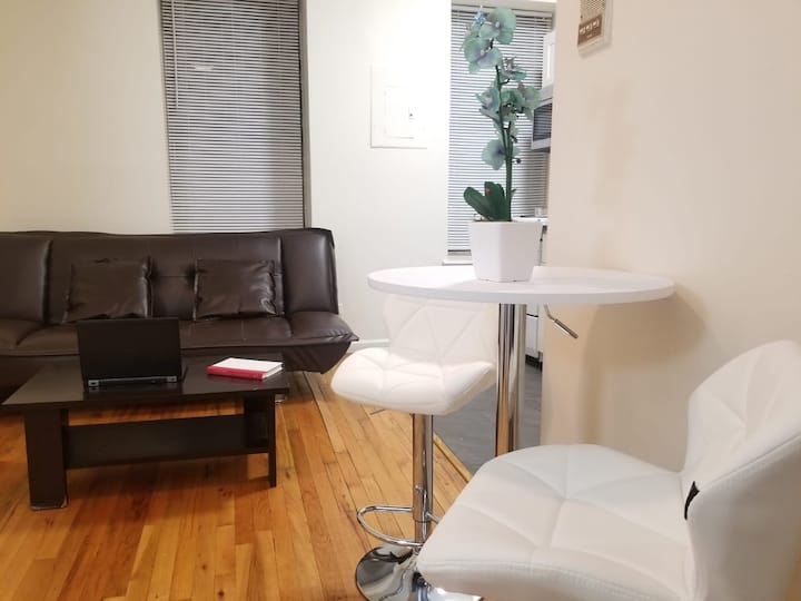 Large NYC 2 bedroom APT - Steps from Central Park