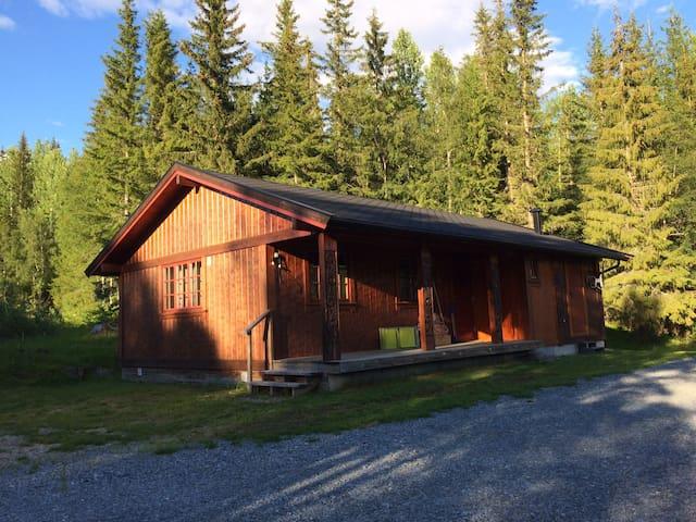 Hyggelig hytte med god standard