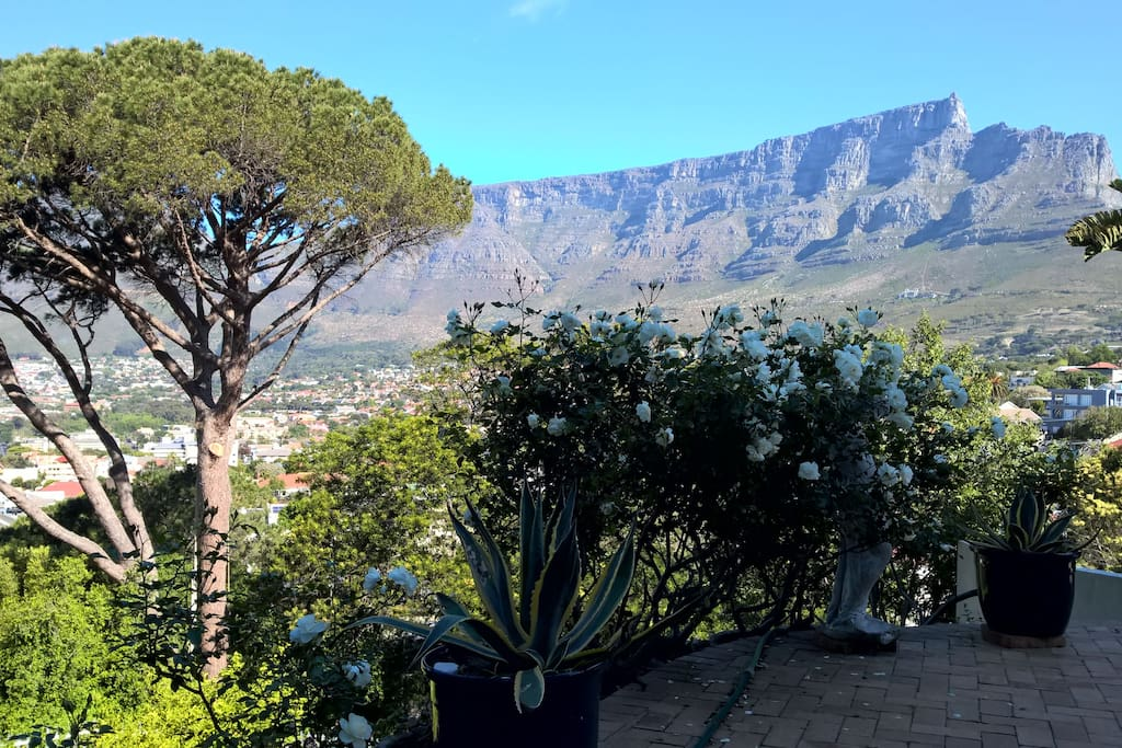 Table mountain from large patio
