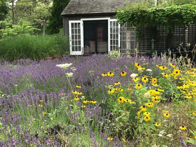 Lovely Lavender Farm Cabin