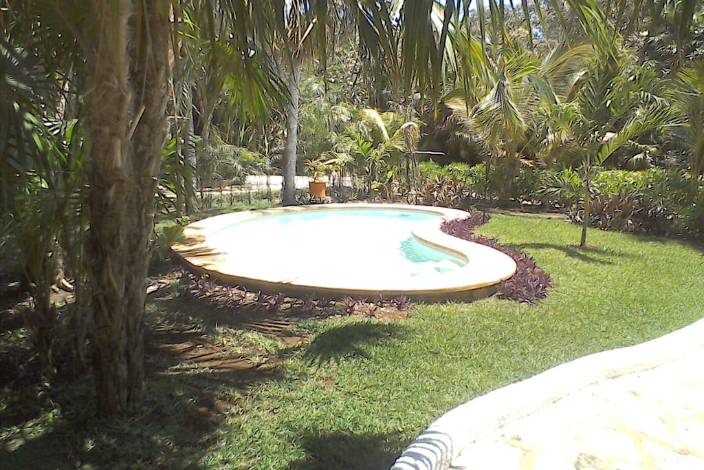 Private Pool in the Garden!