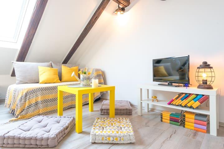 Anandi apartment
