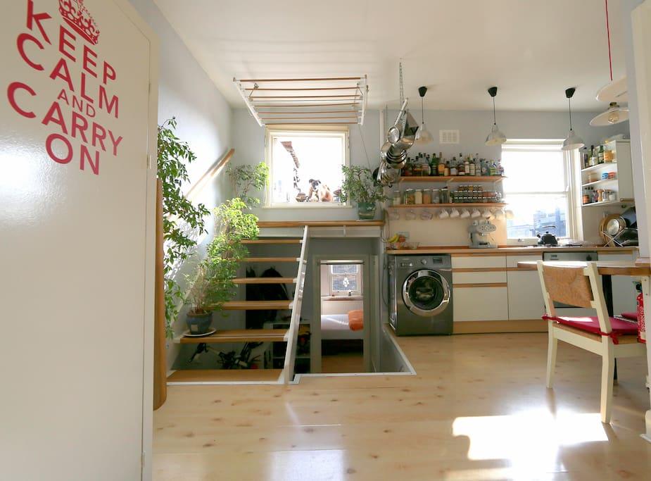 Open-plan kitchen & diner