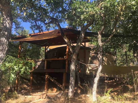 """Yurt Haven - """" The Outdoorsman"""" - Is a Safe Haven!"""