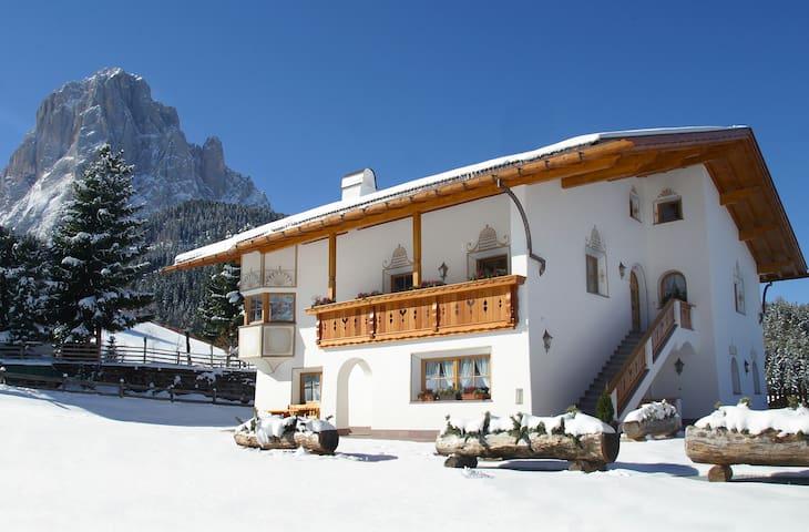 CESA SASPLAT - Selva Val Gardena Dolomites - La Selva