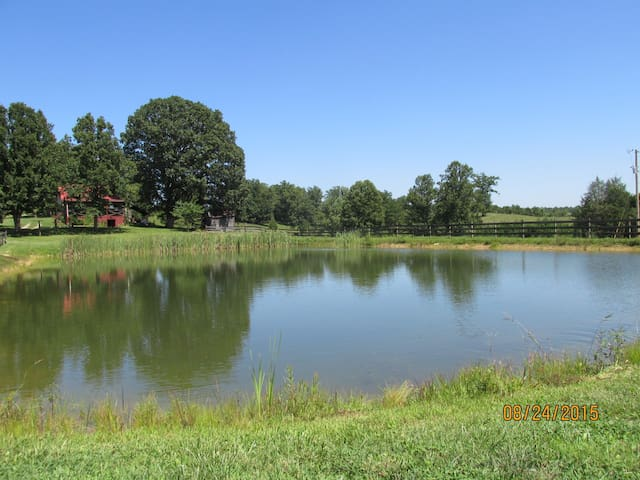 2 BR Cabin W Stocked Pond: Near Wildct Adv. Park! - East Bernstadt