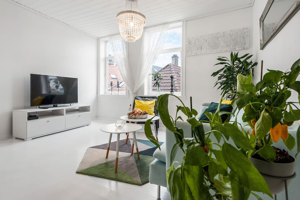 Livingroom with view
