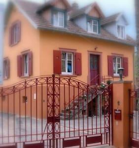 Au Relais Campagnard - Sélestat - Haus