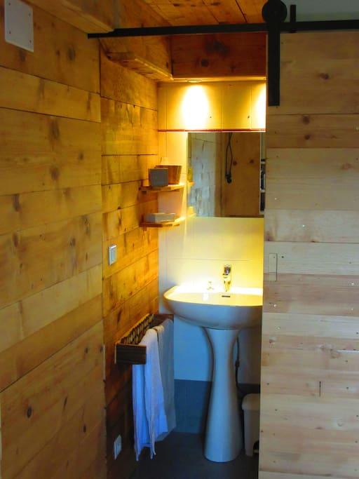 salle de bain avec lavabo et douche