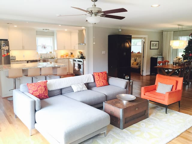 Newly Renovated Modern Home - Houston - Maison