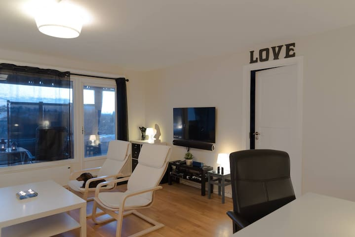Modern technical spacey 4 room apartment in Oslo - Oslo - Byt