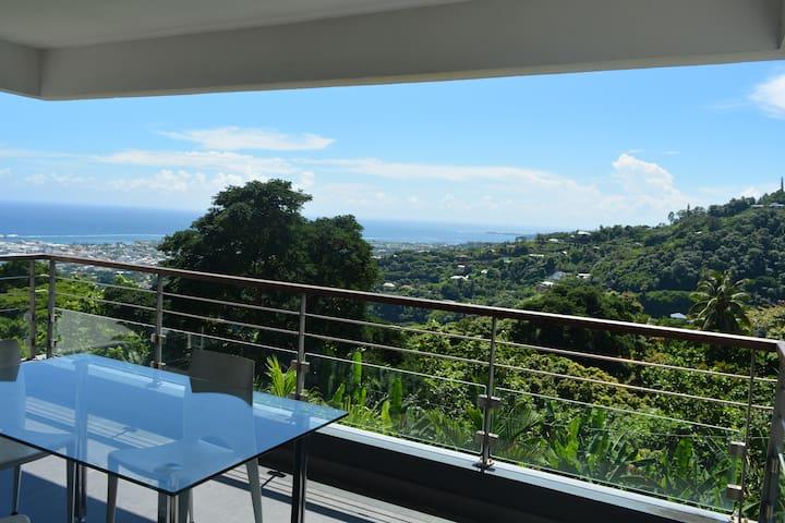 Studio proche de Papeete, spacieux et récent - Îles du Vent - Leilighet