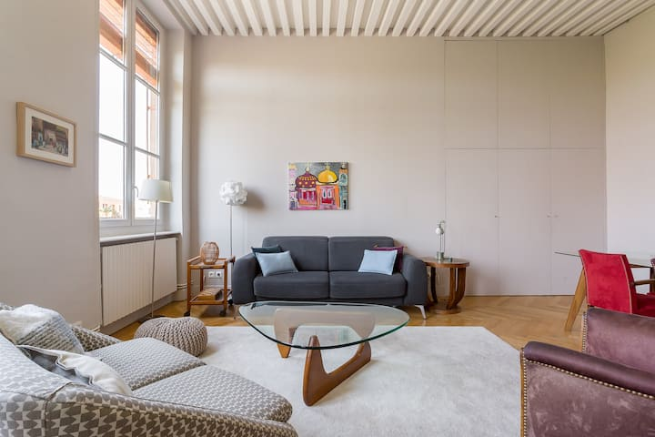 Gorgeous loft on a square in La Croix-Rousse