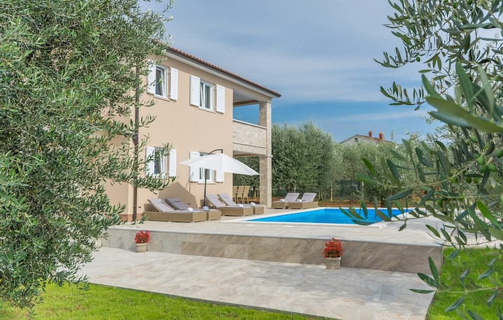 Villa Terlevic with Pool surrounded by Olive Groves