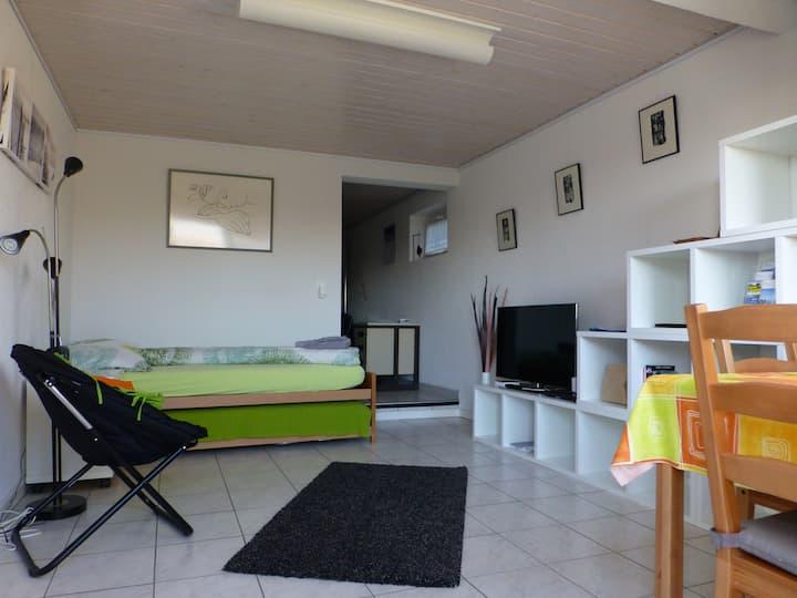 Chambre indéndant 35 m2, terrasse, Grandson /2
