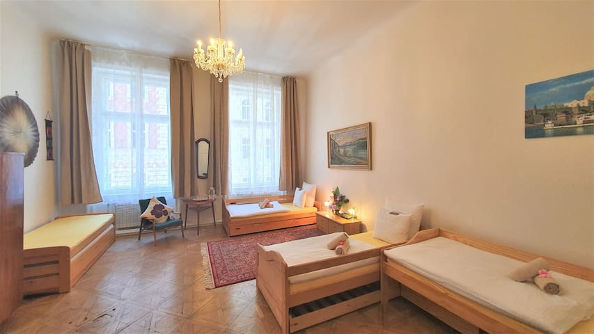 A cozy, clean, 30m2 room in the city center.