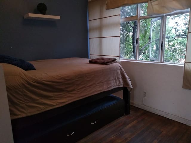 2 beds in the heart of Condesa