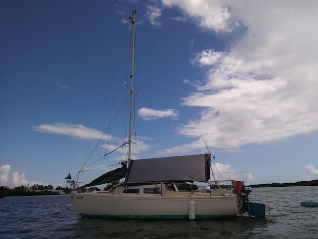 Cozy 22 Foot Eco Sailboat w/Kayak (s)
