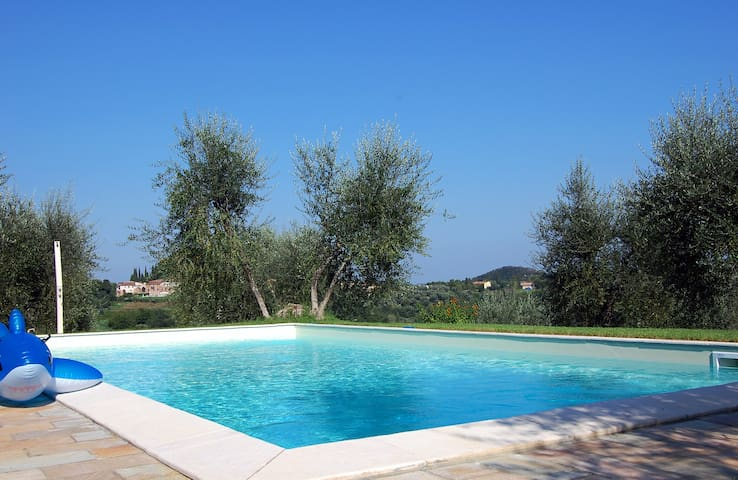 The Olive Press-2 bedroom flat on farm  with pool - Palaia - Appartement