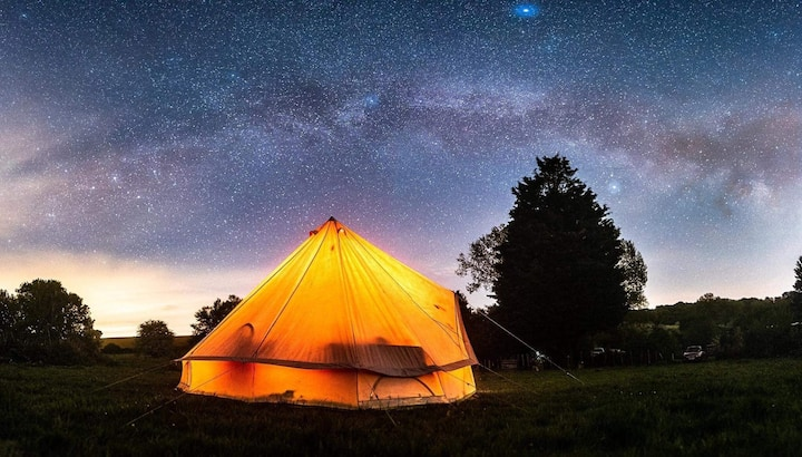 Wild Camping Woodland