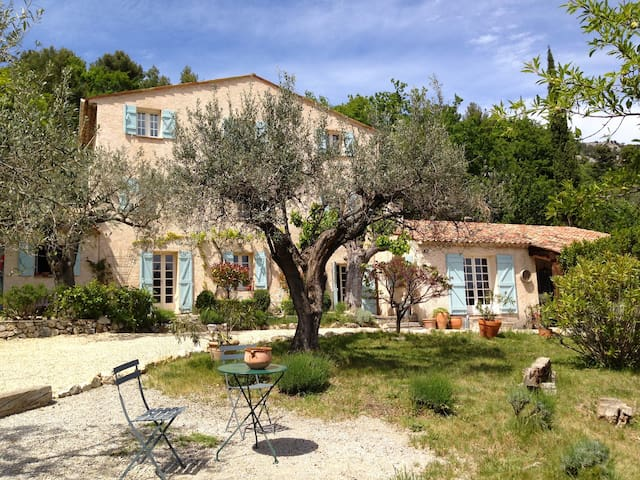 Charming old Bergerie with pool in olive grove!