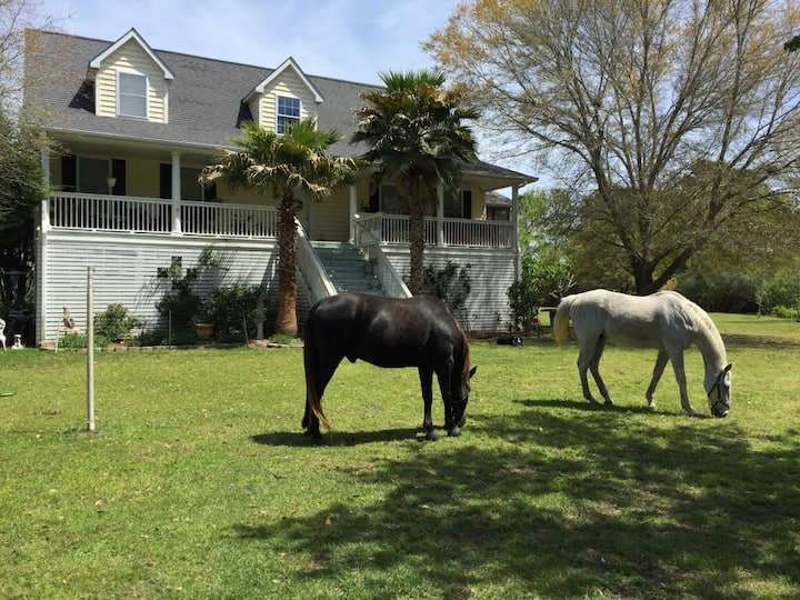 HORSE FARM/APT 2 BD on 6Acres!  Ride, Fish, Relax
