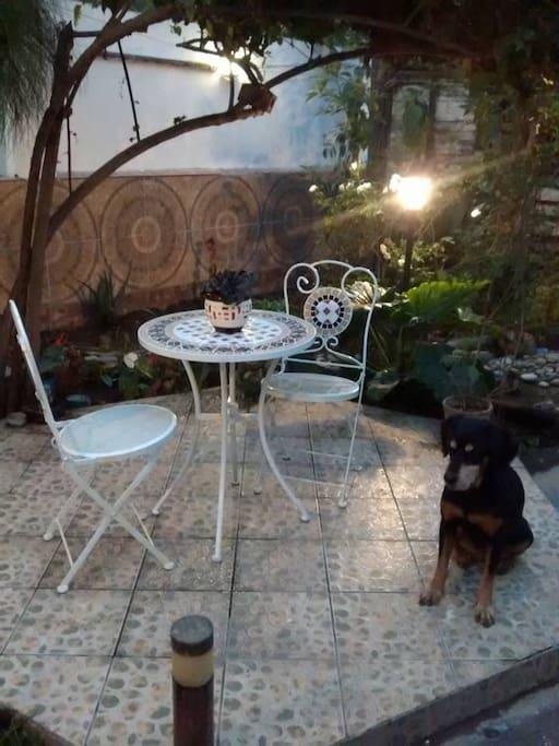 Jardín con zona mesa para lectura