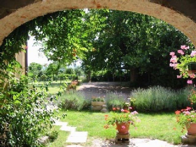 Agriturismo in Toscana Casa Aia - Bucine - Apartment