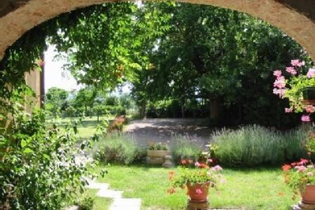 Agriturismo in Toscana Casa Aia - Bucine - Appartement