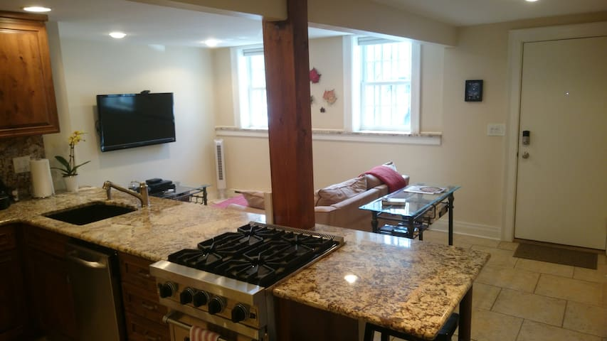 Luxury Apt. in Perfect Location - Albany - Apartment