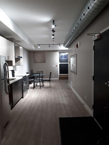 Renovated 1 bedroom Apartment downtown Hamilton