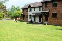 Gleneagles Cottage - Rear