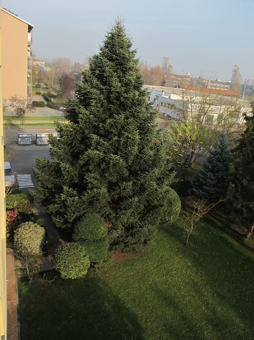 View of the communal garden from the Flat's balcony