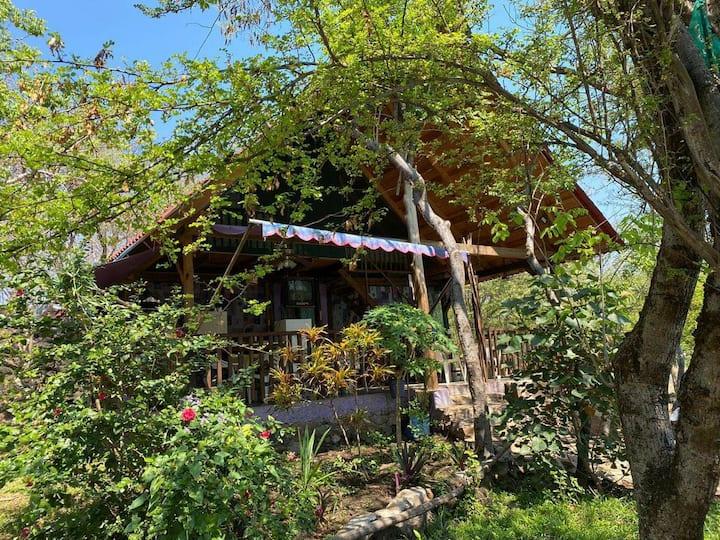 Cabaña La Chachalaca Alberca y pila de agua termal