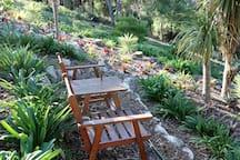 Garden seats in the bush