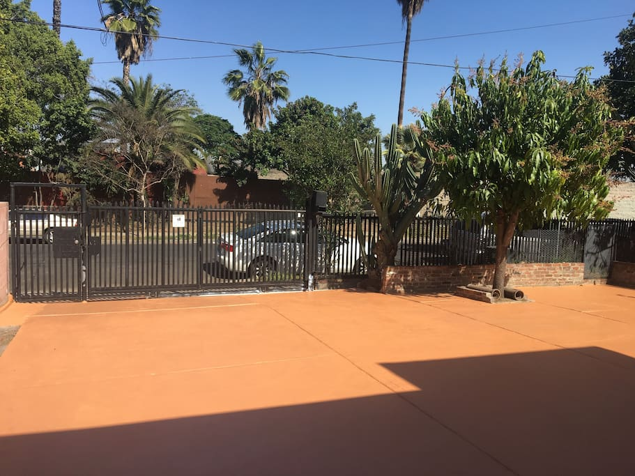 Driveway parking entry area with view of cactus and mango tree