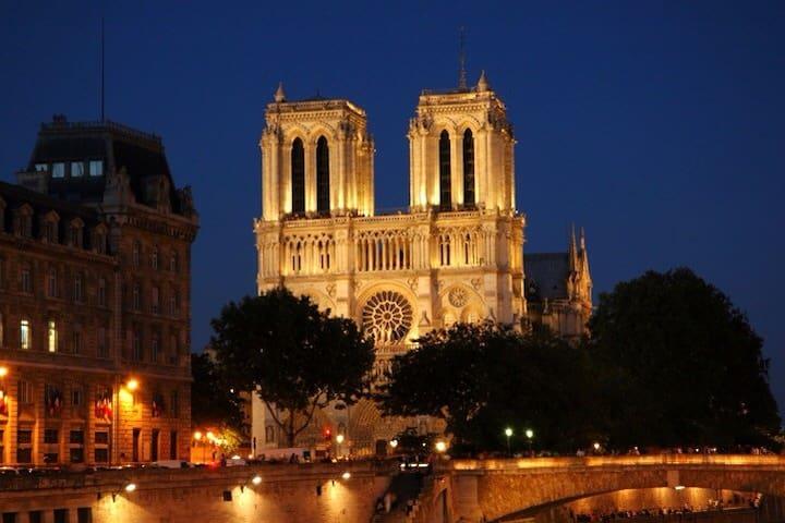 Notre Dame,Le Louvre,Saint Michel.. - Parigi - Appartamento