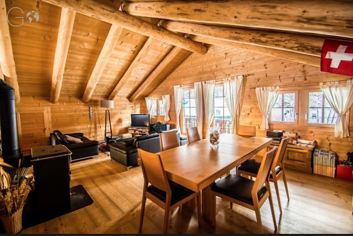 Magnificent and comfortable duplex in a chalet