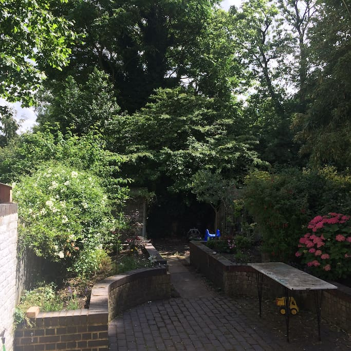 Victoria Park is backdrop to our garden