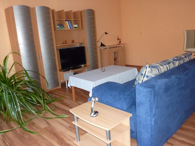 Komfortable 1-Zimmer Apartment am Elberadweg - Bleckede - Apartment