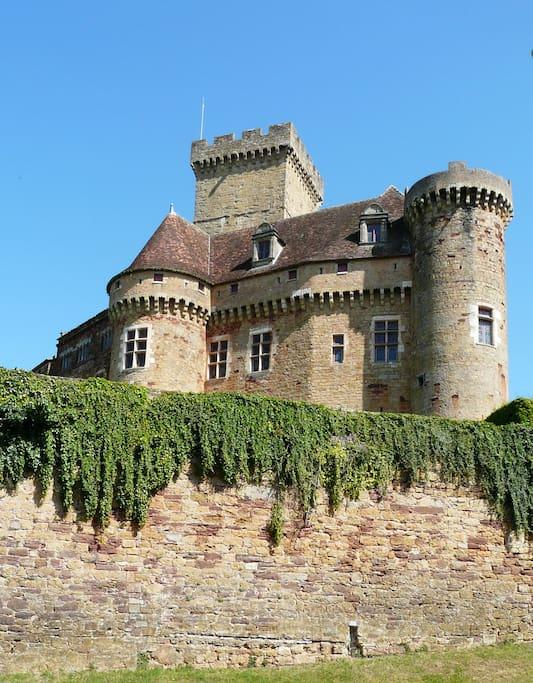 Chateau vu de la maison