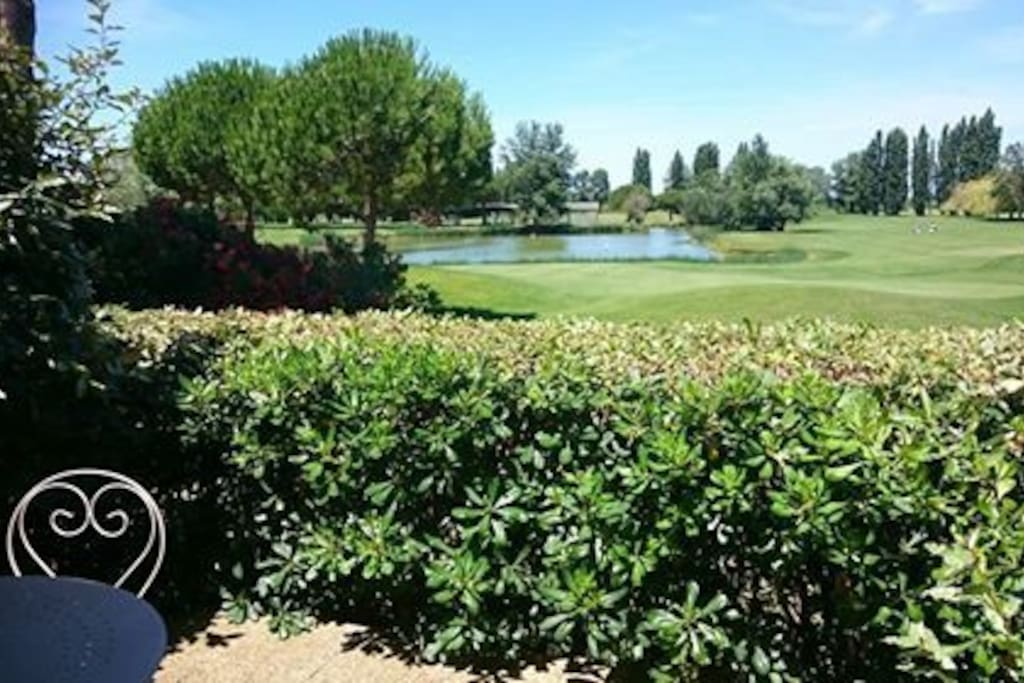 La superbe vue sur le golf sur lequel vous pouvez vous promener en toute liberté et où vous pouvez nourrir les canards.