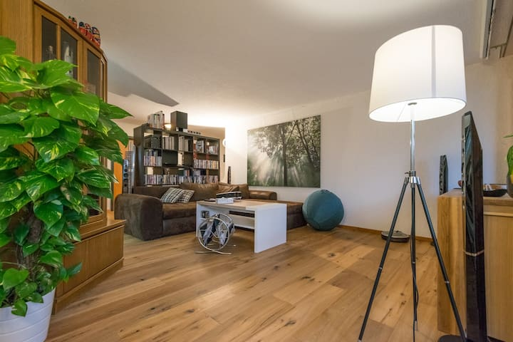 Private guest room for rent with beautiful terrace - Thun - Flat