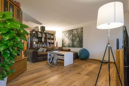 Private guest room for rent with beautiful terrace - Thun - Huoneisto