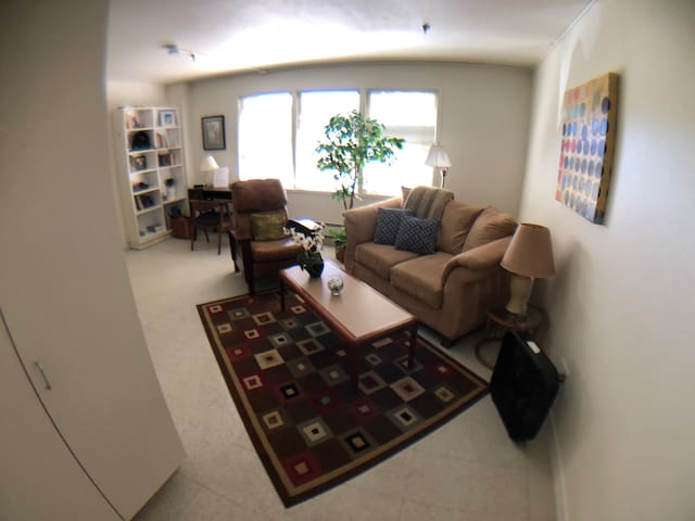 Downtown San Anselmo Apartment #C